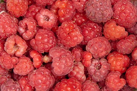 raspberries, background photo