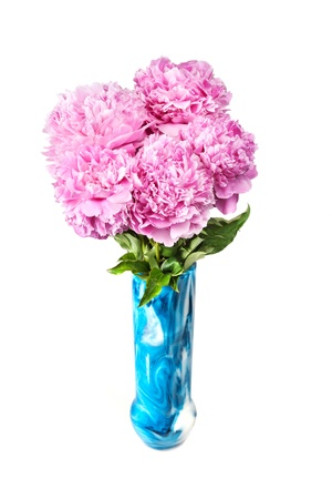 peonies in vase isolated on white  Stock Photo - 13012089