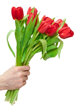 arm bouquet: bouquet of tulips isolated on white