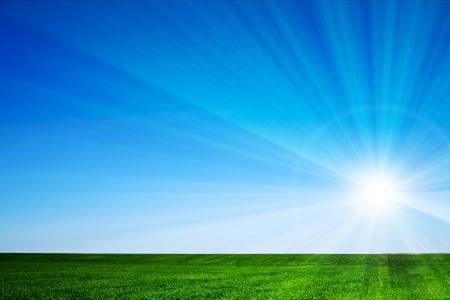 clear day: beautiful landscape, green grass, blue sky