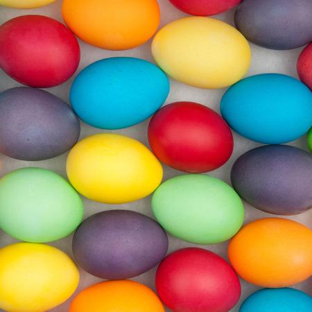 multi color: multi color eggs