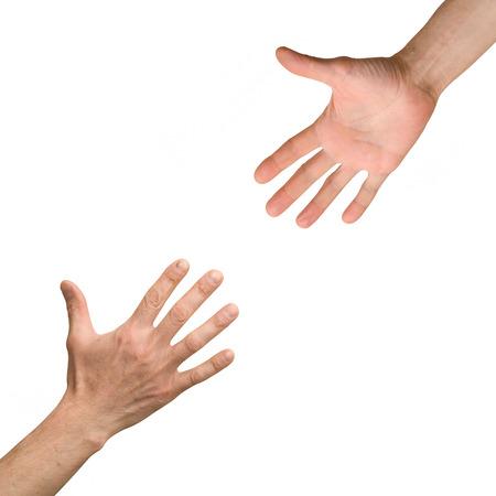 arm: arm