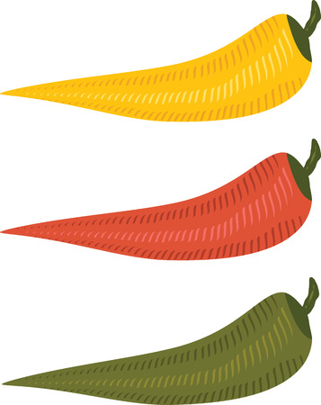 multi: three multi colored chili peppers on isolated background
