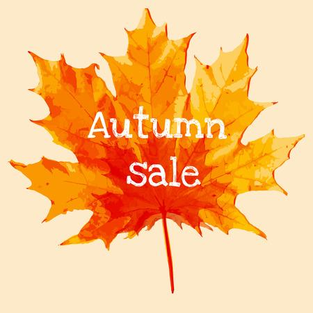 fall colors: wonderful maple leaf withautumn sale text Illustration
