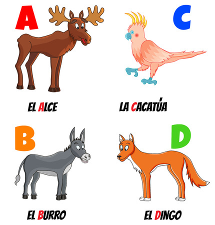 spanish alphabet with different animals: moose, cockatoo, donkey and dingo Vector
