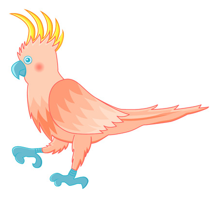 funny cockatoo parrot vector illustration on isolated background Vector