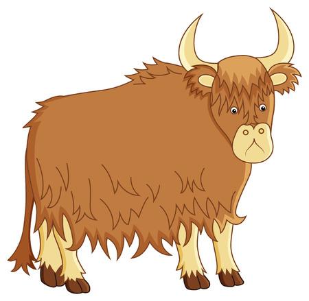 funny ox: funny image of yak on isolated background Illustration