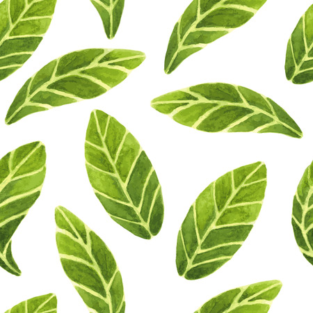 Fresh and beautiful vector seamless pattern with green leaves images on isolated background. All leaves are hand painted in watercolour. Illustration