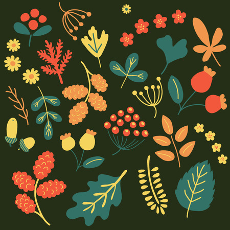 nodules: vector ser of leaves, acorns, flowers and other elements for scrapbooking