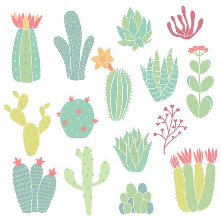 set of hand drawn cacti on isolated background