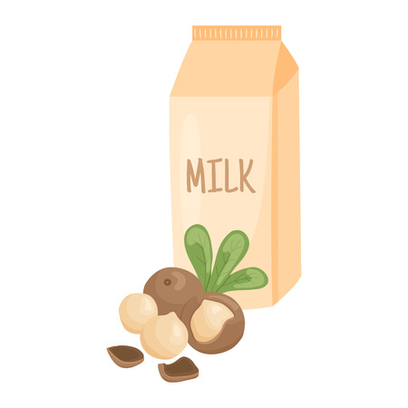 macadamia: vector illustration of macadamia nuts with leaves and milk pack on isolated background Illustration