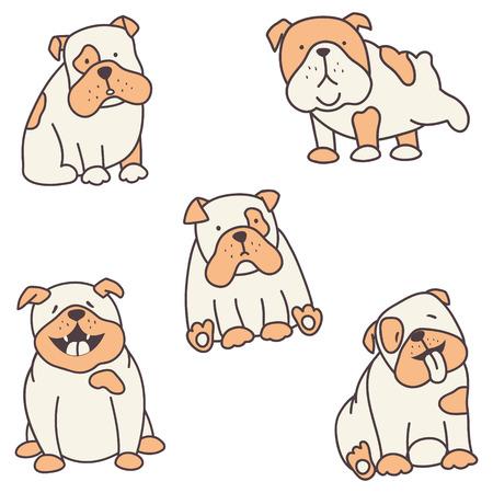 Vector conjunto de lindos bulldogs ingleses sobre fondo aislado