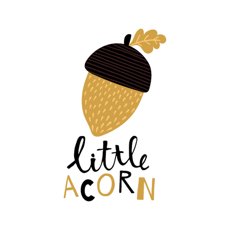 vector illustration of an acorn and hand lettering text Иллюстрация