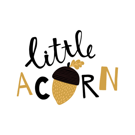 vector illustration, beautiful hand lettering with acorn image