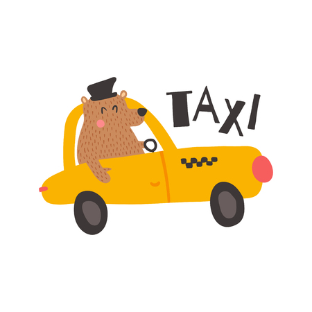 vector illustration, funny bear driver in a yellow taxi, isolated background