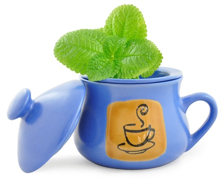 freshening: Dark blue ceramic cup for tea leaves of tea and mint sheet  Stock Photo