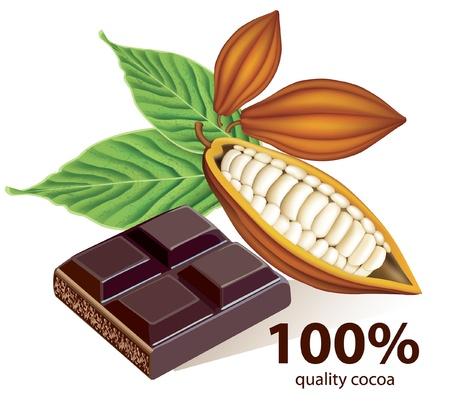 barra de chocolate: Habas de vector de cacao con barra de chocolate  Vectores