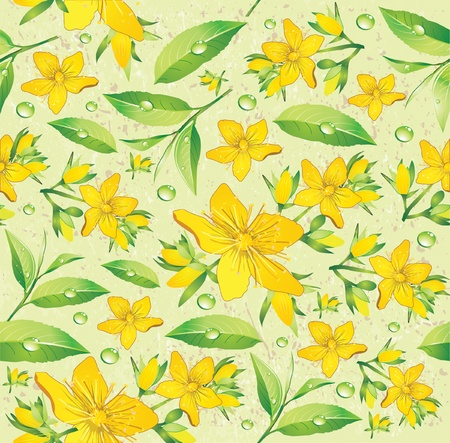 Elegance Seamless beige and Hypericum with green tea