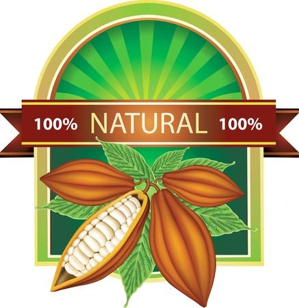 bean plant: Etiqueta con granos de cacao 100% natural Vectores