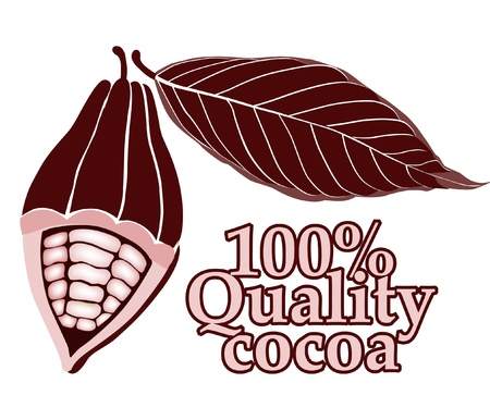 milk and cookies: Cacao - cocoa beans