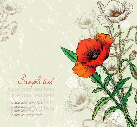 Card abstract poppy flowers Vector