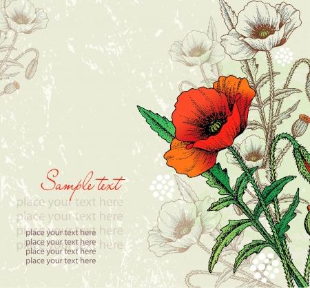 amapola: Tarjetas abstractas flores de amapola