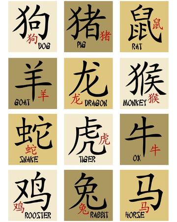 superstitious: Segni zodiacali cinesi  Vettoriali