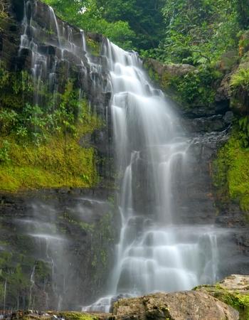 waterfall through a dense lush forest Stock Photo - 1489814