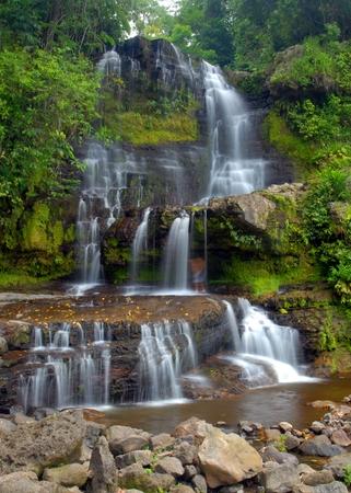 waterfall through a dense lush forest