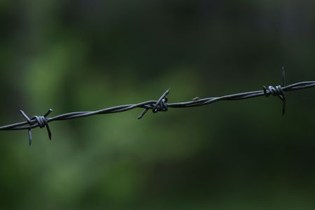 thrash: Piece of barbed wire and the fly on it Stock Photo