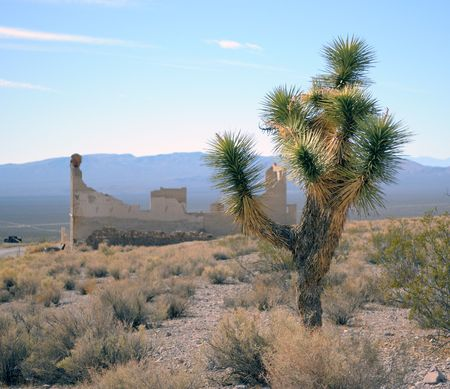 Cactus, sand, the road, the thrown collapsed house. Host town in Death Valley, California Imagens