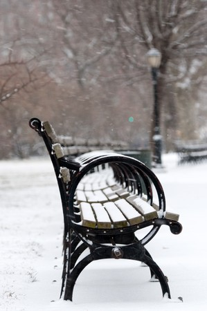 Benches in park under white falling snow against a lantern