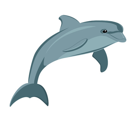 sea side: Vector illustration of the dolphin