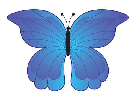 hexapod: Blue Butterfly, top view, illustration
