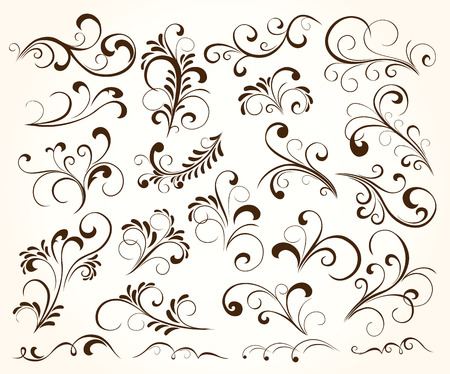 elementos: Conjunto de elementos florales para decoraci�n, ilustraci�n
