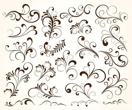 elementi: Insieme di elementi floreali per arredamento, illustrazione