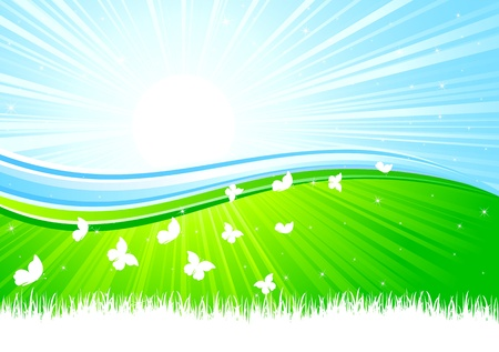 Sunburst background with Butterfly, illustration Vector
