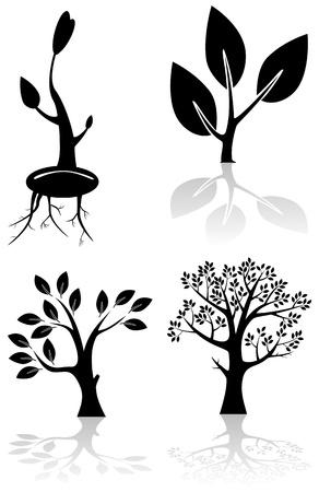 tree of life silhouette: Set of black trees, illustration Illustration
