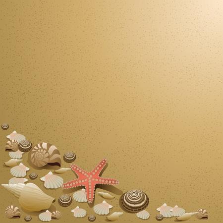 Conchiglie di mare sulla sabbia come sfondo, illustrazione