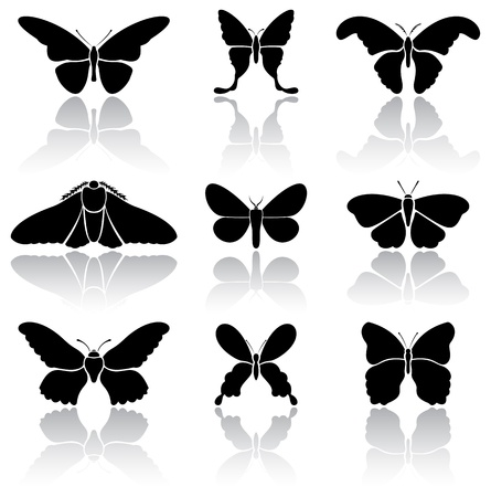 animals shadow: Set of black Butterflies icons on white background, illustration Illustration