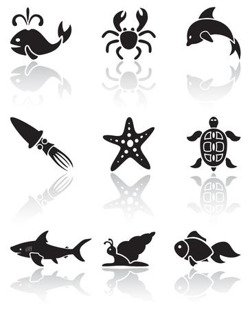 stella marina: Set di icone nere Animali di mare su sfondo bianco, illustrazione