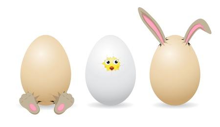Set of amusing Easter eggs on white background, illustration Vector