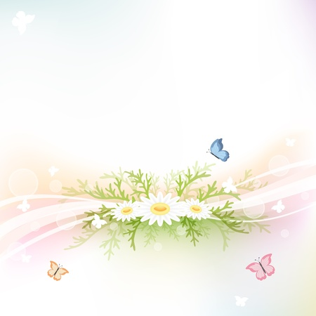 Abstract background with chamomiles and butterflies, illustration Vector