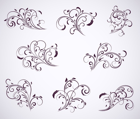 rococo style: Set of floral elements for decor, Illustration