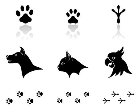 huellas de animales: Conjunto de iconos de animales negros sobre fondo blanco ilustración,. Vectores
