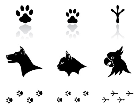 trail: Set of black animal icons on white background, illustration.