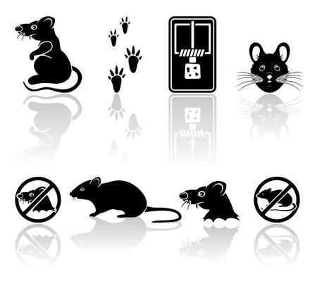 rata caricatura: Conjunto de iconos negros del rat�n aislados sobre fondo blanco, ilustraci�n