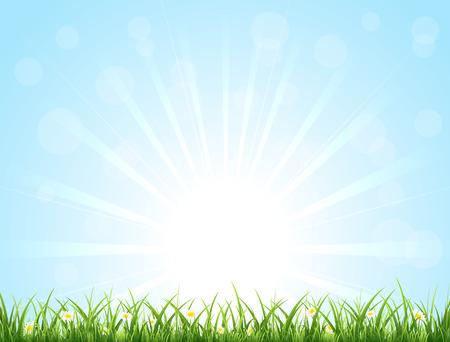 太陽、草、花、イラストと青の自然の背景