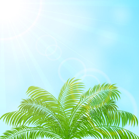 Palme auf blauer Himmel Hintergrund, Illustration