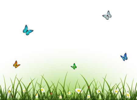 spring background: Summer background with flowers butterflies and ladybugs, illustration